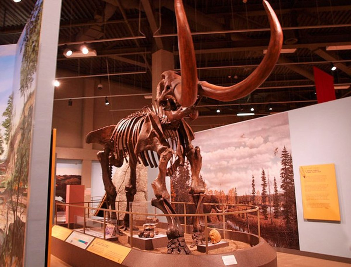 North Dakota Heritage Center: located in Bismarck, the North Dakota Heritage Center offers an overview of the history of North Dakota from prehistoric to modern times. Photo by minnemom via Flickr.