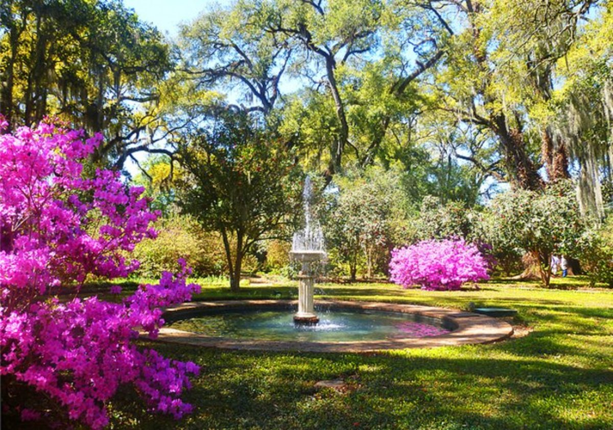 The Rosedown Plantation: is a State Historic Site known for being one of the most well preserved domestic Southern plantations. Photo by dtroyka via Flickr.