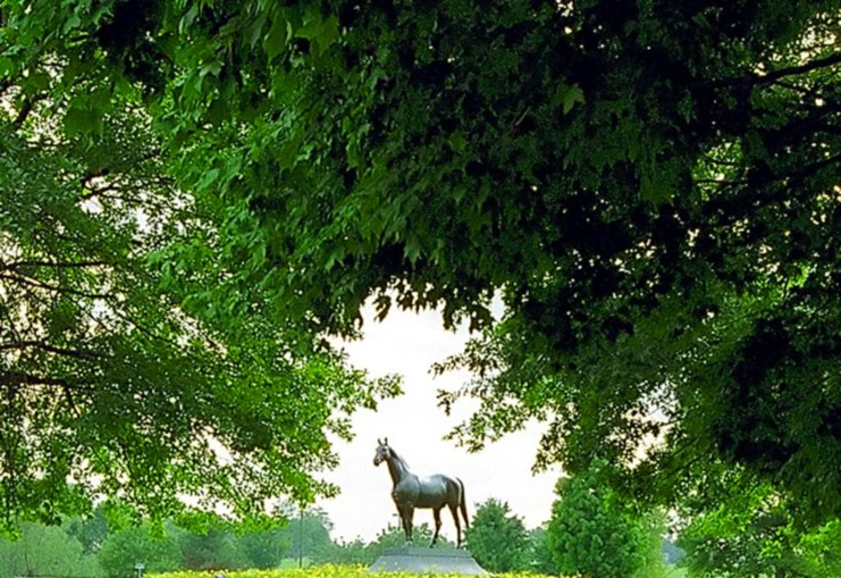 The Kentucky Horse Park: located a short drive north of Lexington, allows visitors a chance to see a working horse farm, learn about, and visit with horses. Photo by David Paul Ohmer.