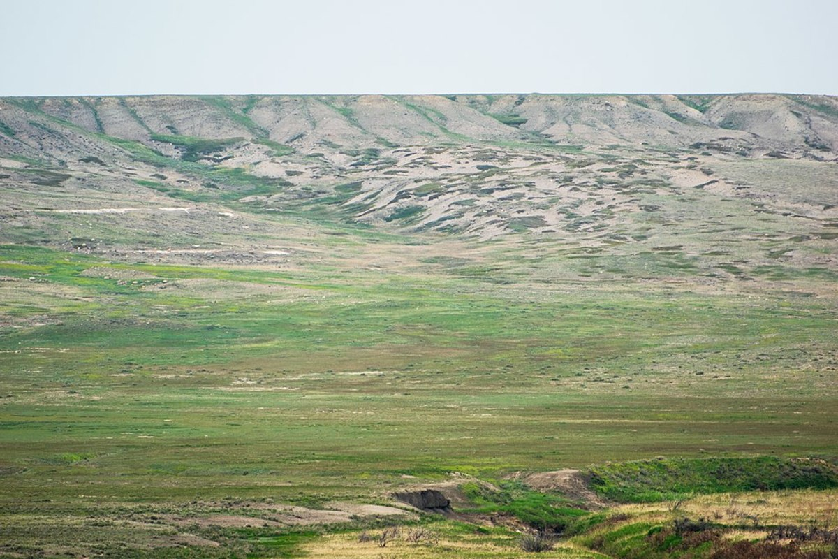 Grassland is an example of a natural ecosystem.