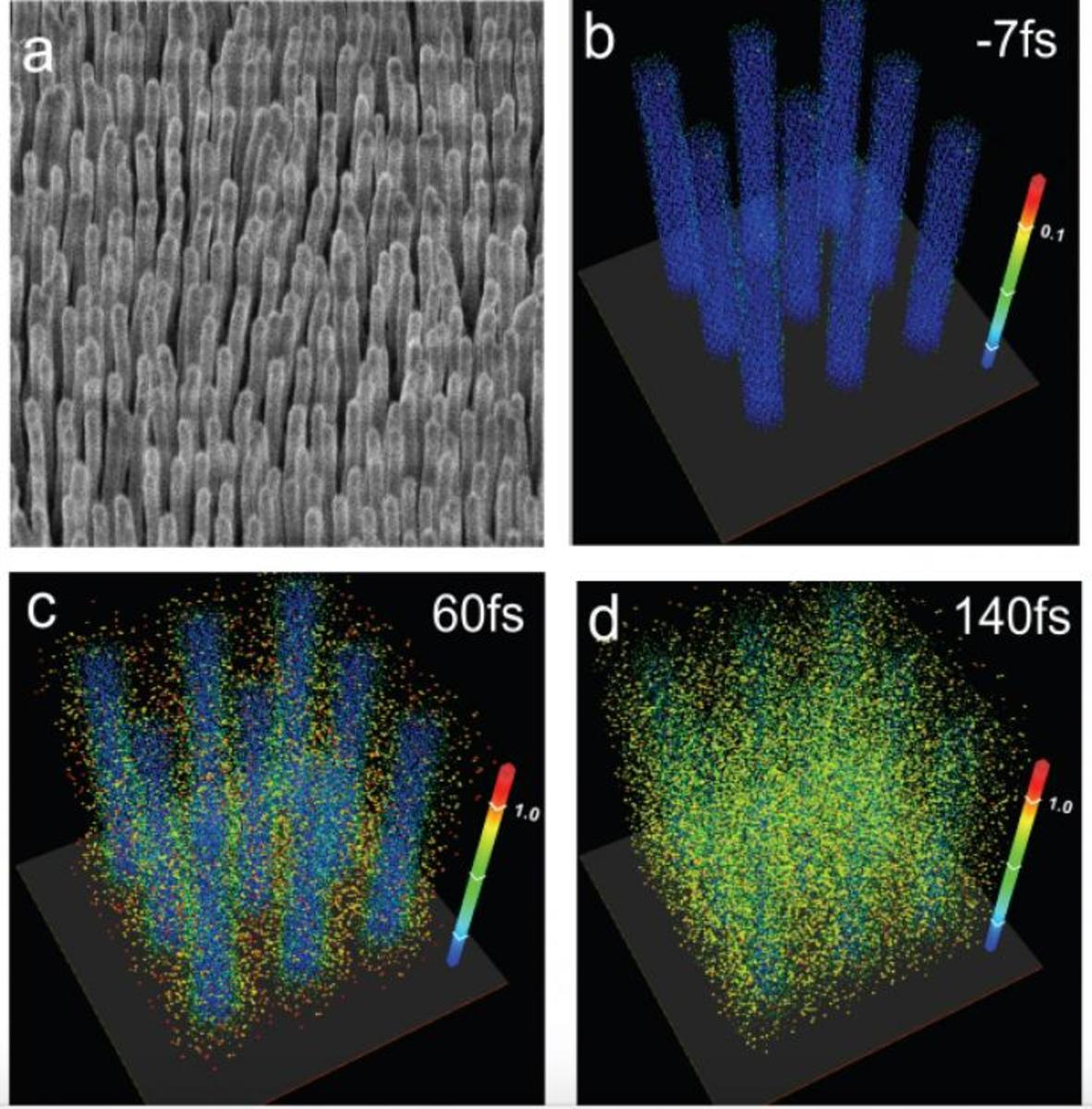 Nuclear fusion with nanowires.