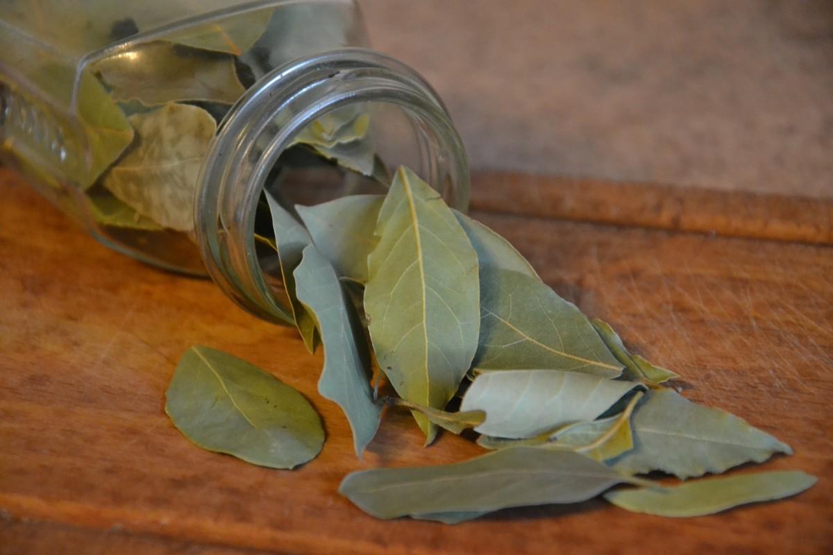 Bay leaf|Tej Patta