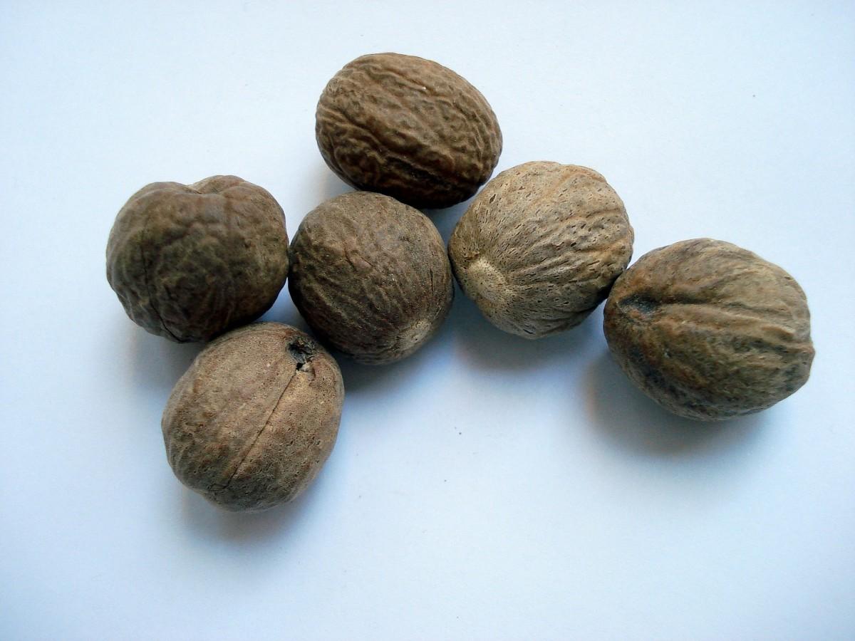 Nutmeg|Jaayfal