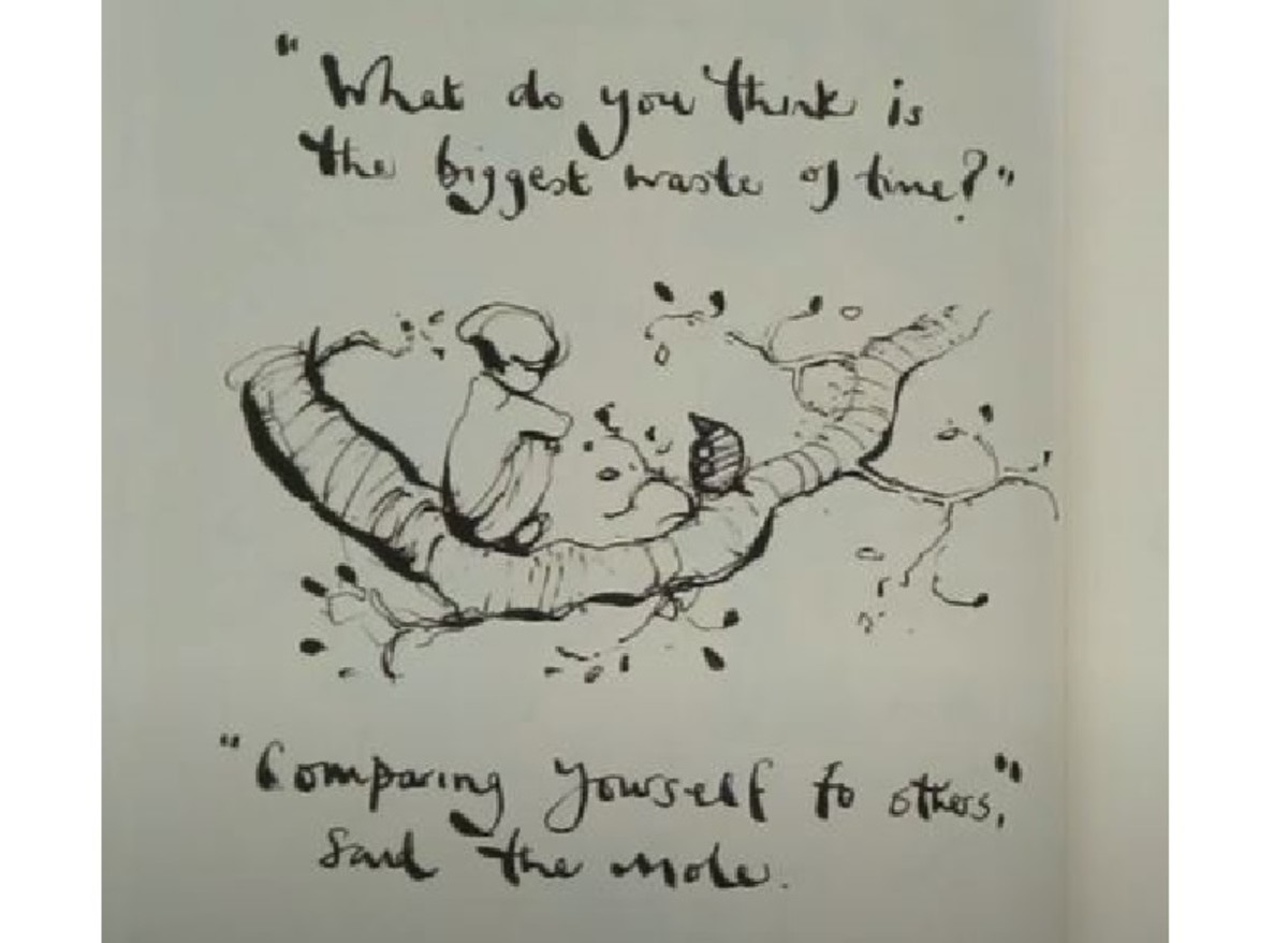 """""""What do you think is the biggest waste of time?"""" """"Comparing yourself to others,"""" said the mole."""