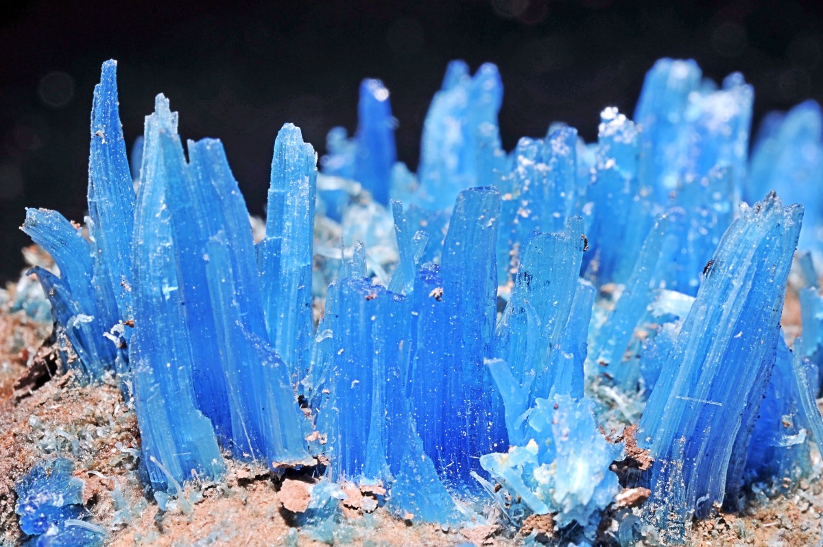 Crystals of chalcanthite (blue) and limonite (brown) minerals; chalcanthite is hydrated copper sulphate while limonite is a mixture of hydrated iron oxides