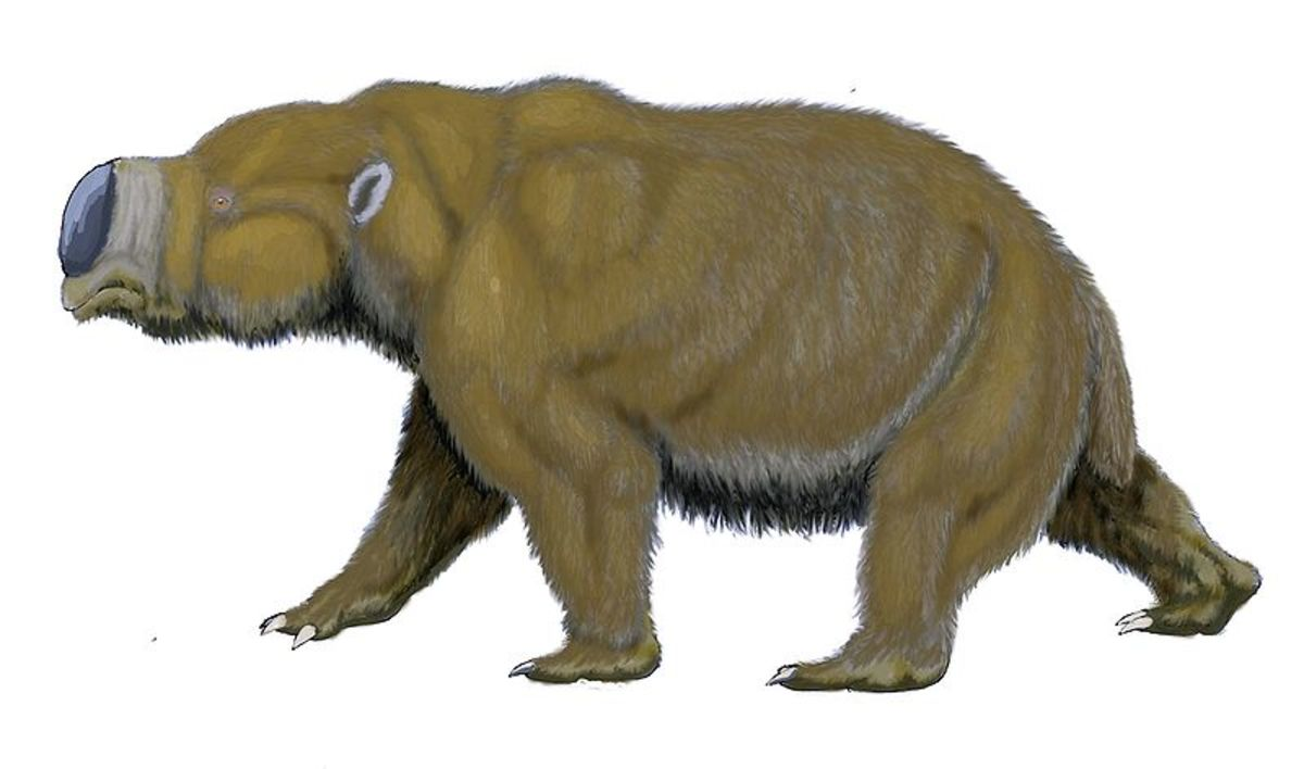 A depiction of diprotodon.