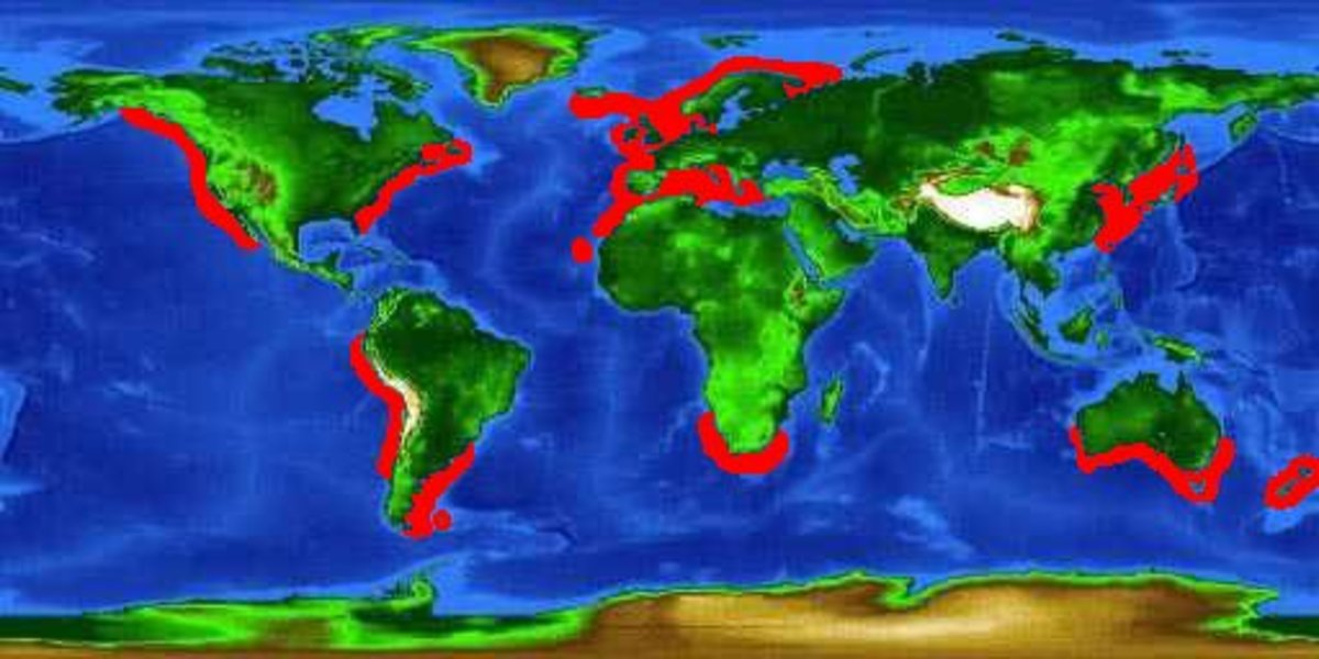 Global distribution map