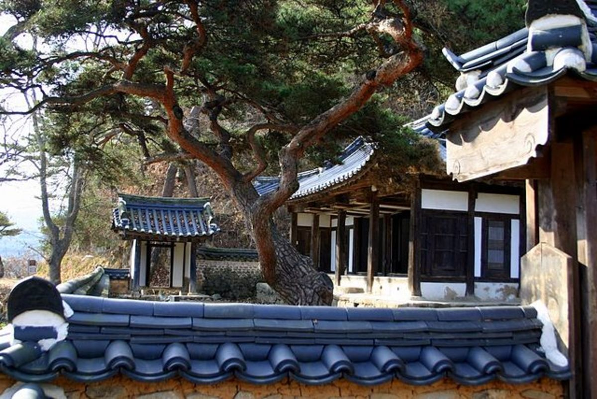 Hahoe Okyeonjeongsa traditional buildings and a Korean pine tree in Andong city, Gyeongsangbuk-do, South Korea.