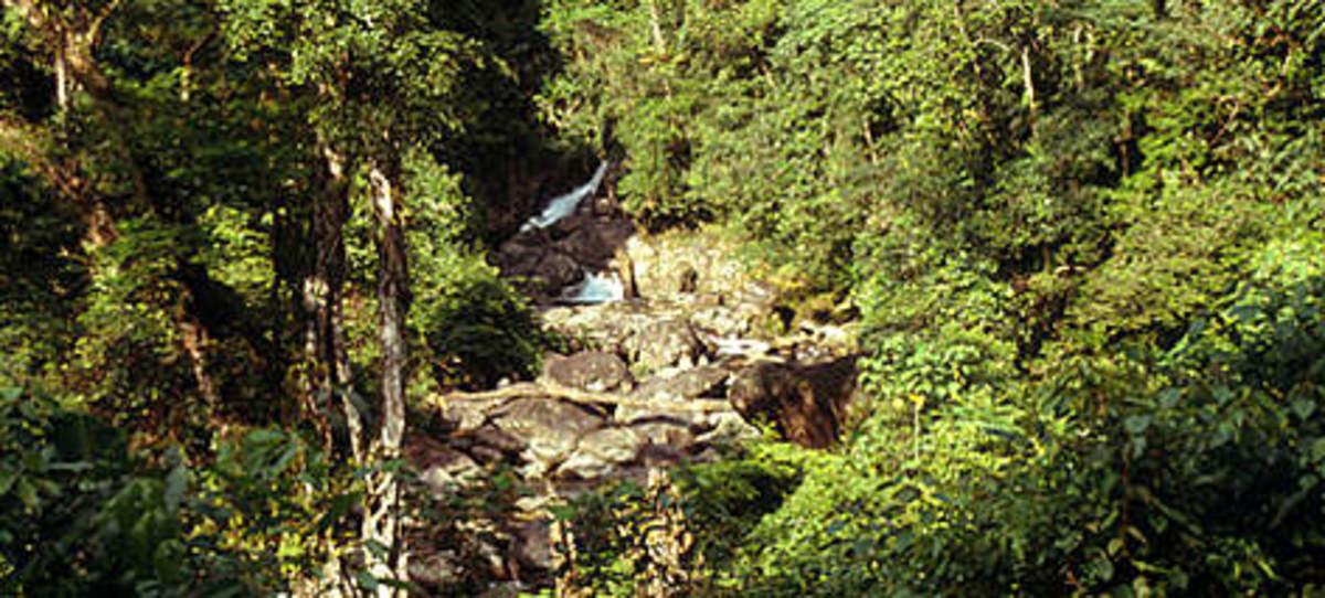Annamite range of habitat