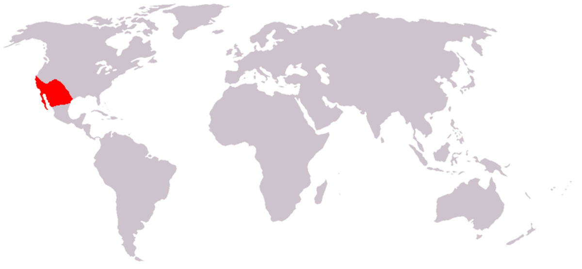 Map of where Roadrunners live