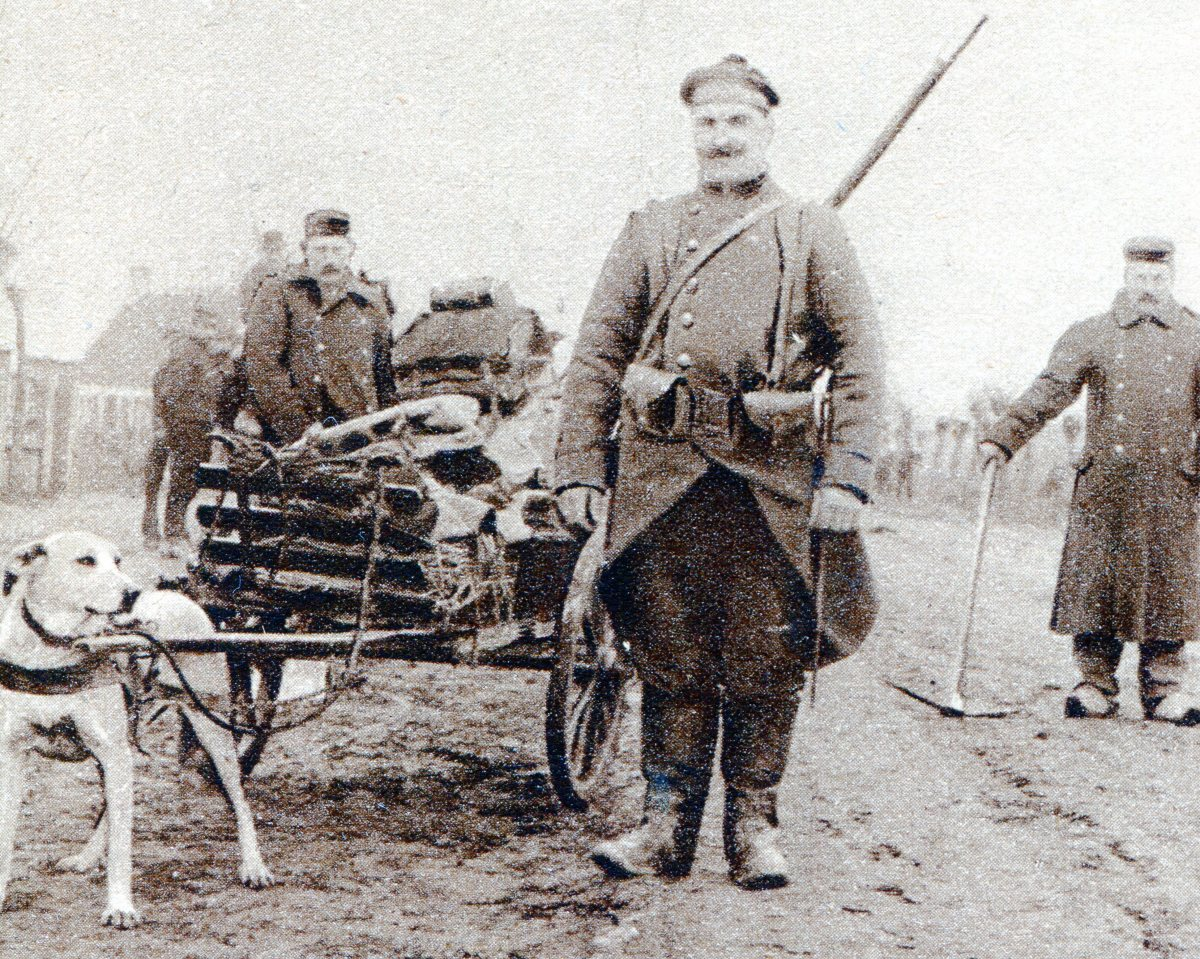 Transporting food and sometimes ammunition, with the help of a small cart.