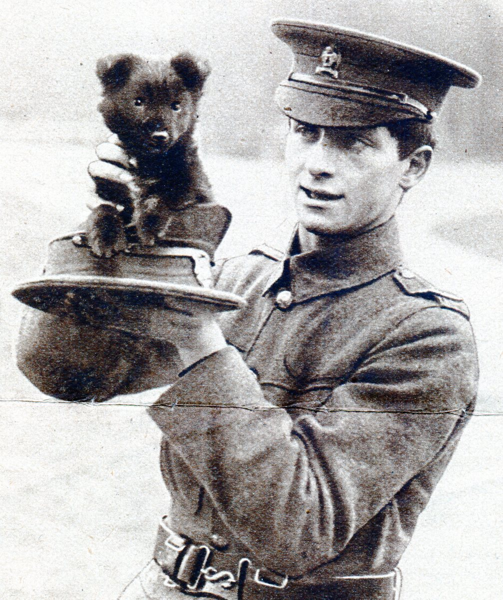 Puppy mascot of the Artist's Battalion