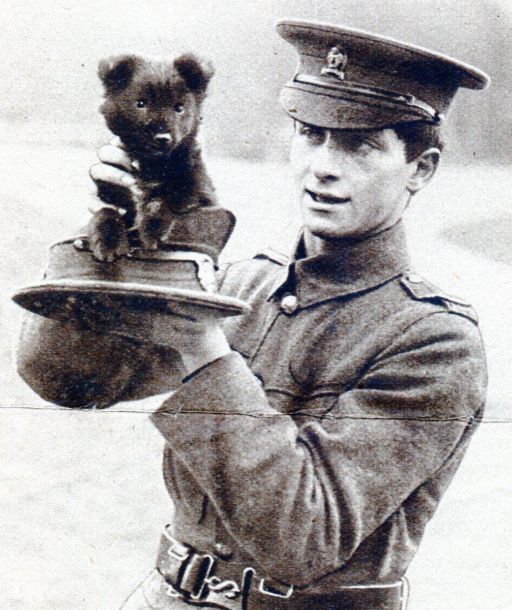 Puppy mascot of the Artist's Battalion
