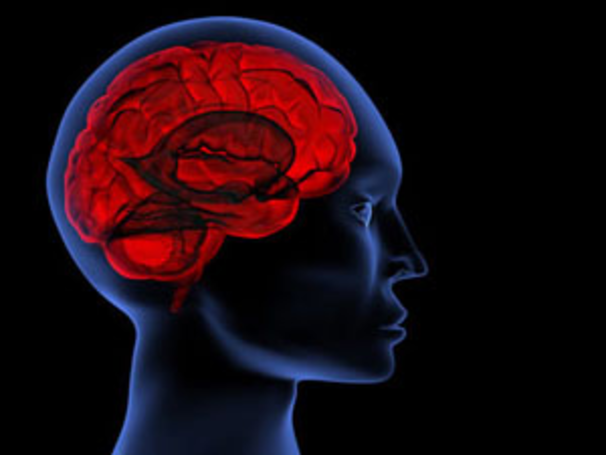 Love suppresses the part of the brain that controls critical thought