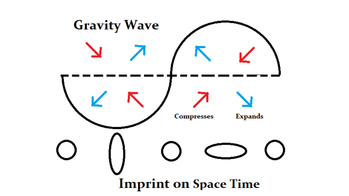 inflation-gravitational-waves-and-the-multiverse
