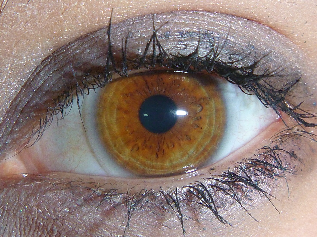 Very light brown or amber colored eye.