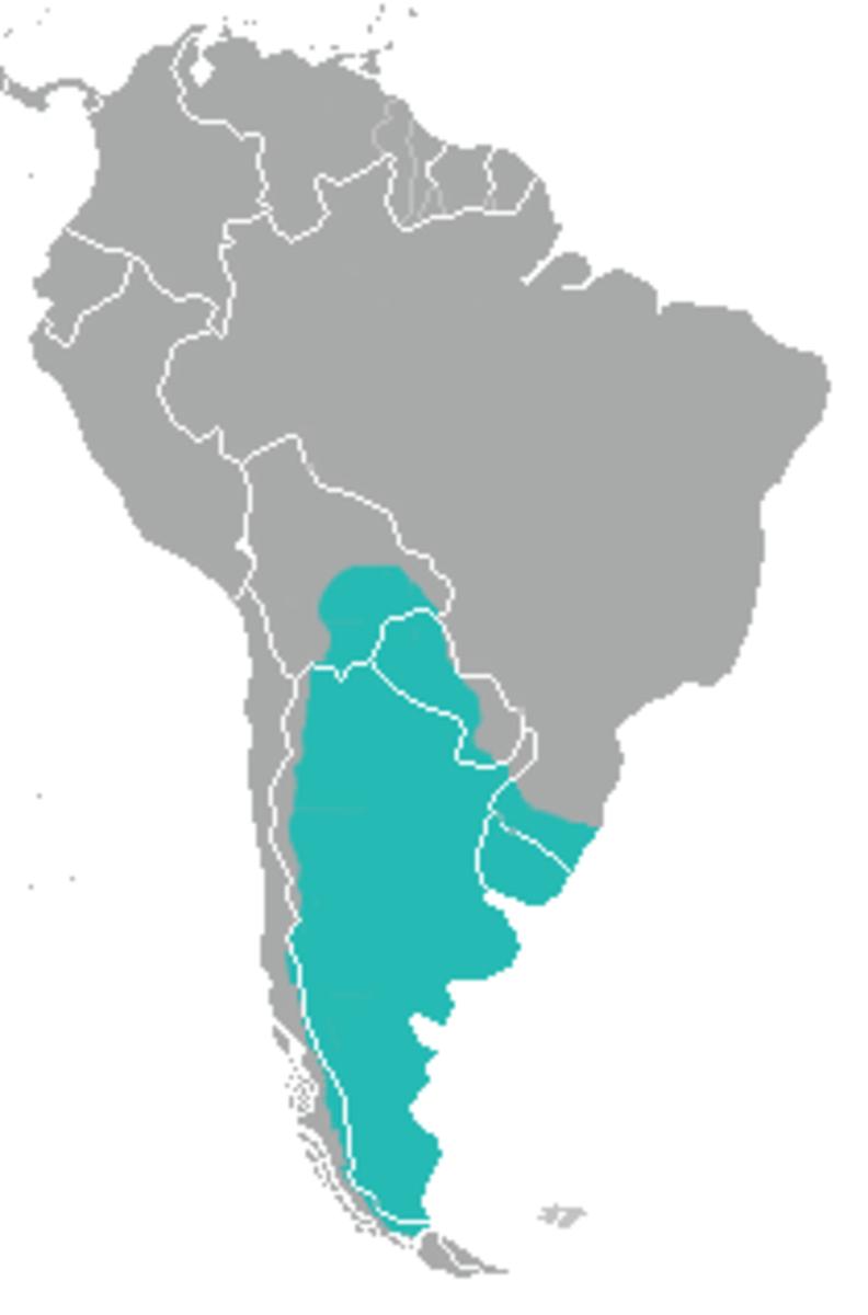 Range map for Geoffroy's Cat (Leopardus geoffroyi),