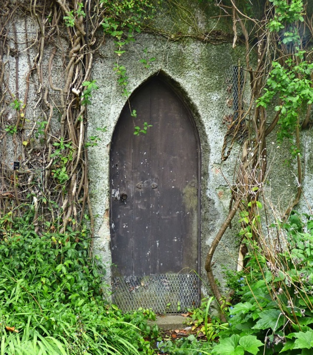 Ancient door in Ireland.