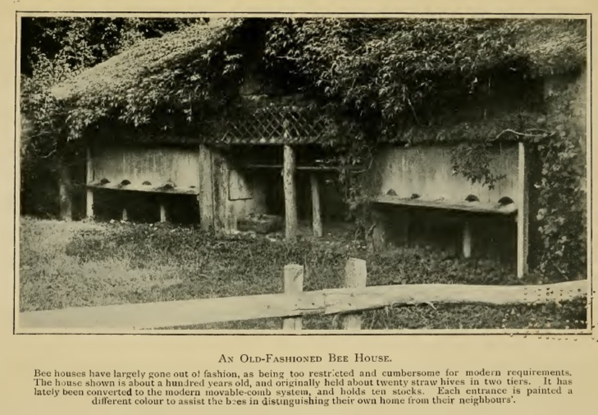 Old Fashioned Bee House (Bee-Master of Warilow)