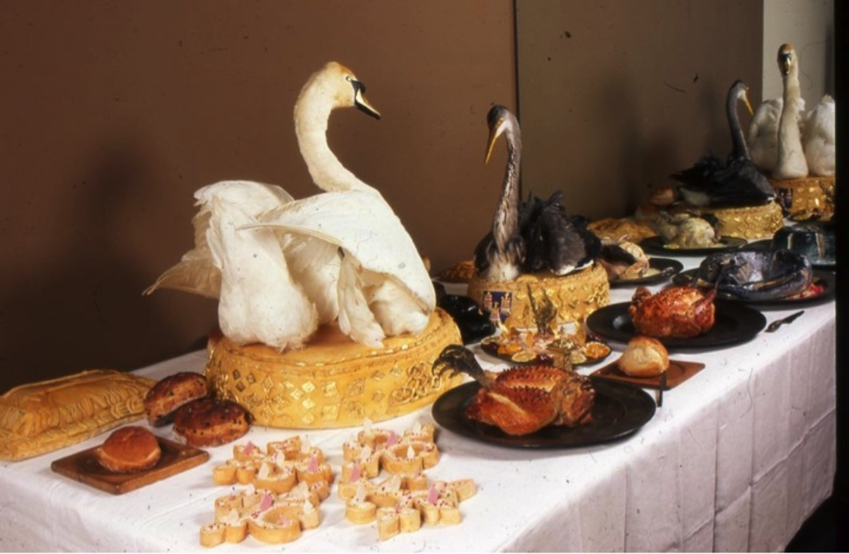 Entremet- decorative edible courses dressed with live swan plumage