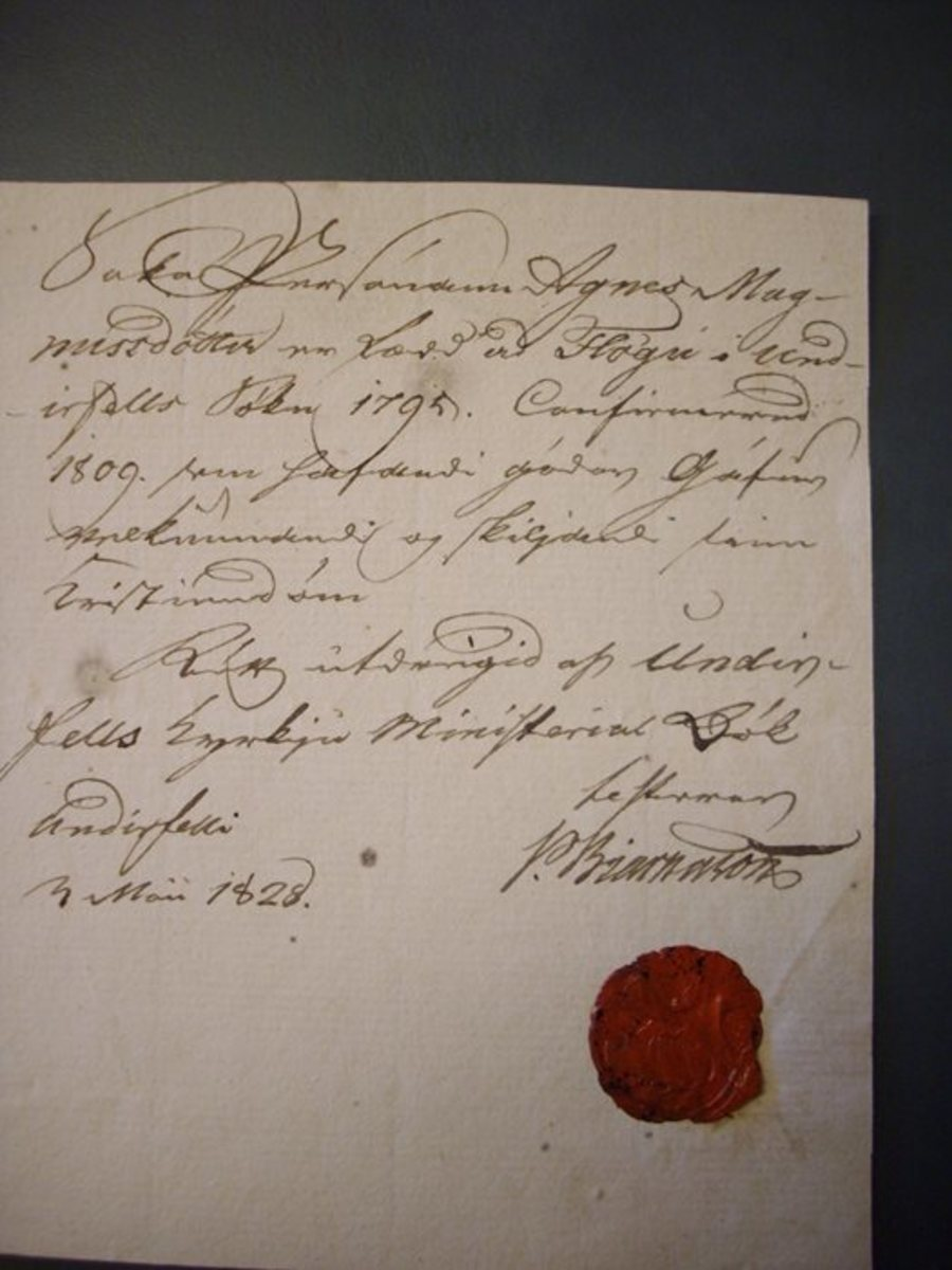 This is a photograph of the original letter from Pétur Bjarnason, Reverend of Undirfell, to Björn Blöndal. Translated, it reads: 'The condemned Agnes Magnúsdóttir was born at Flaga in the parish of Undirfell in 1795...'