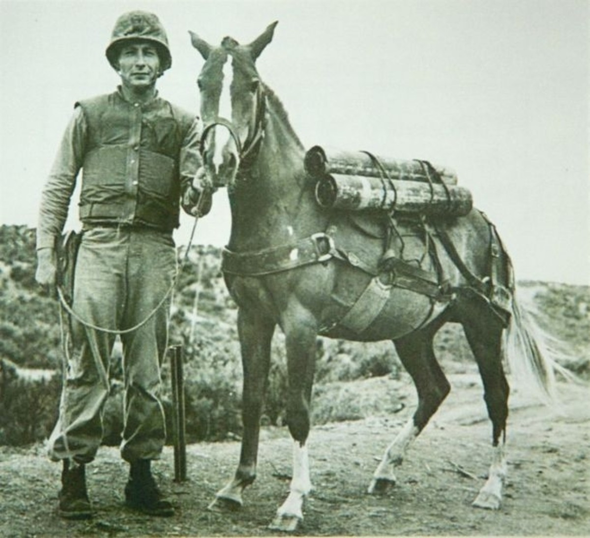 Reckless with her trainer, US Marine Sergeant Joseph Latham (c. 1952)