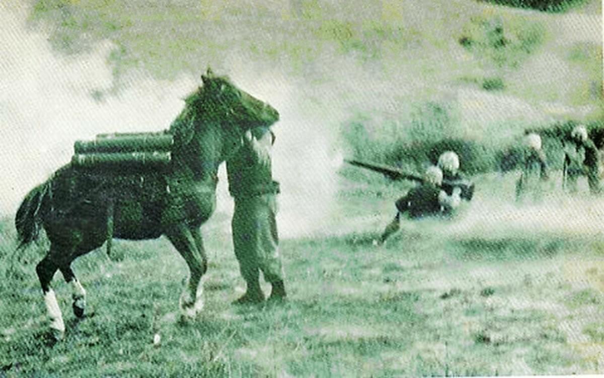 Reckless under fire in Korea.