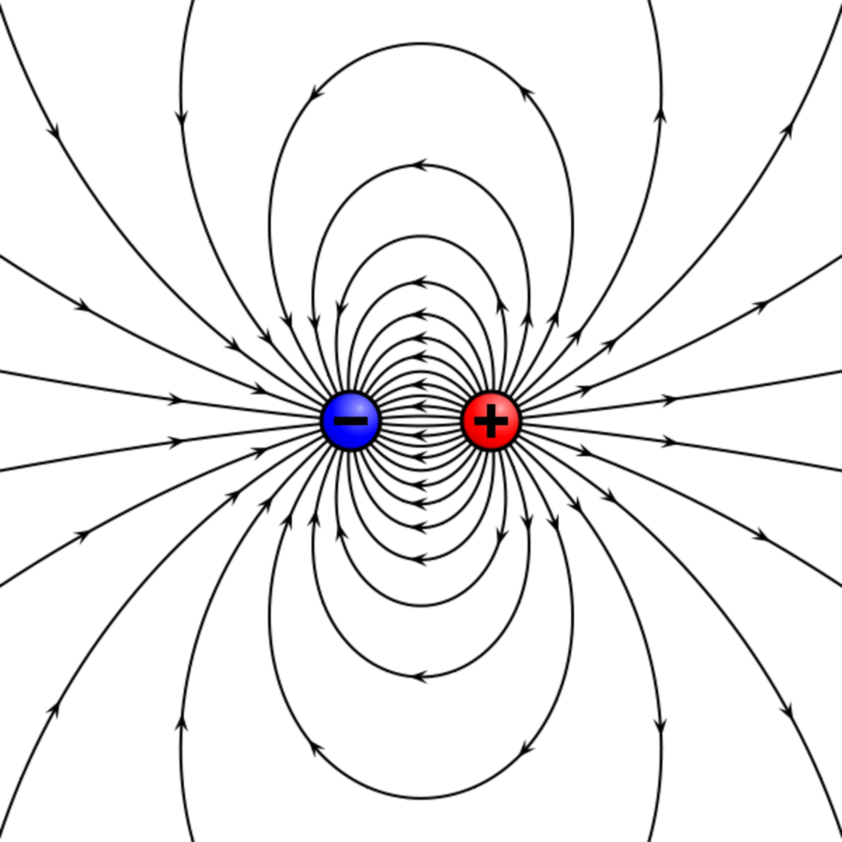 Lines of force between a positive and negative charge.
