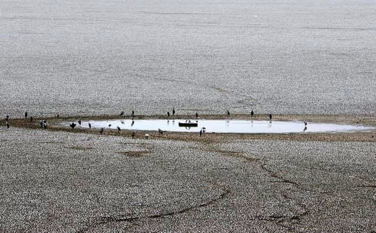 Lake Puzhal