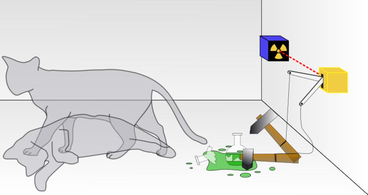 Diagram of Schrödinger's cat thought experiment.