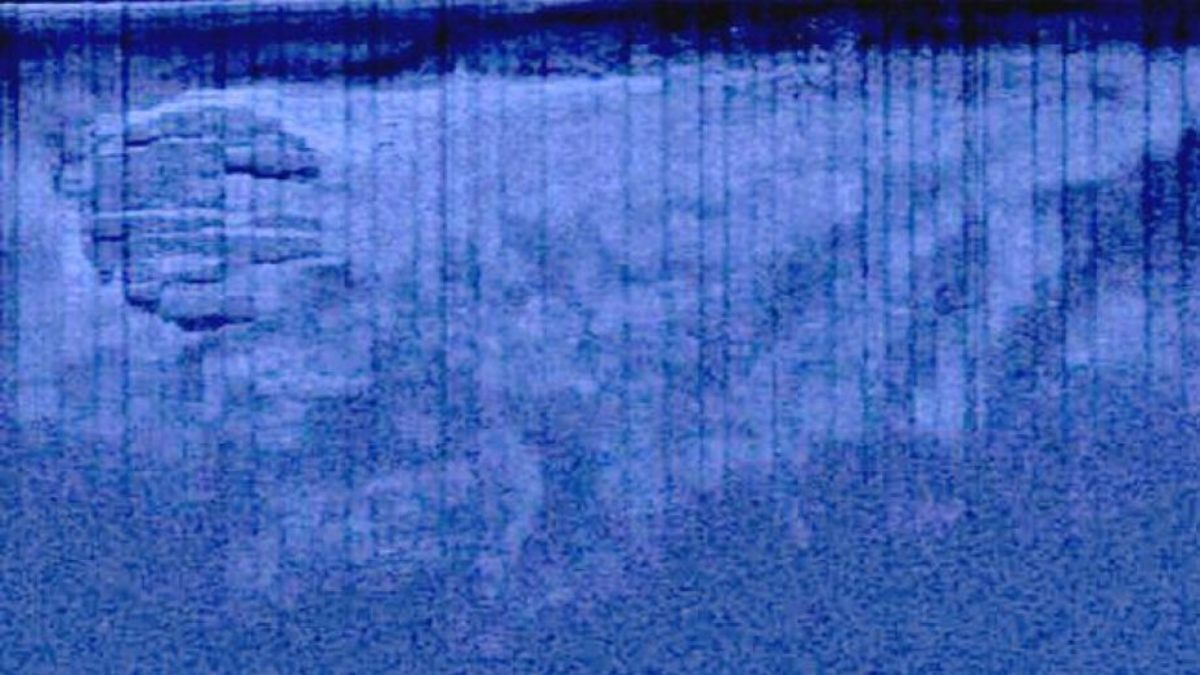 as it appeared on sonar