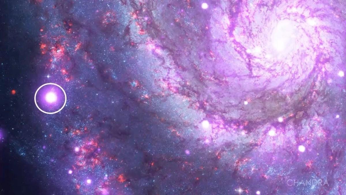 ULX in Whirlpool Galaxy
