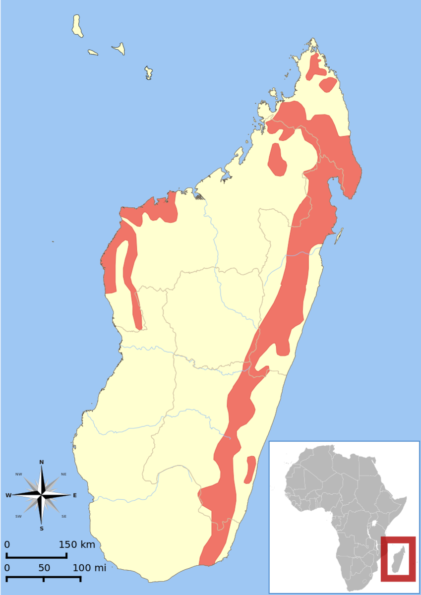 Location of Madagascar and distribution of the aye-aye according to the last population assessment