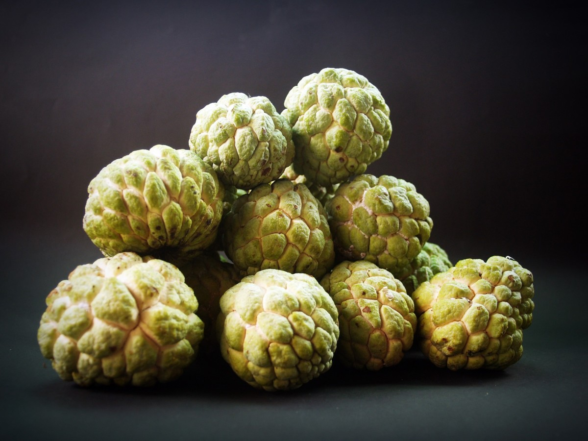 Sugar-apple|Seetafal|ਸੀਤਾਫਲ