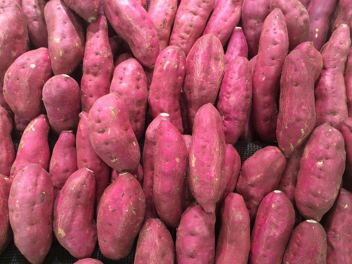 Sweet Potato Shakarkandi ਸ਼ਕਰਕੰਦੀ