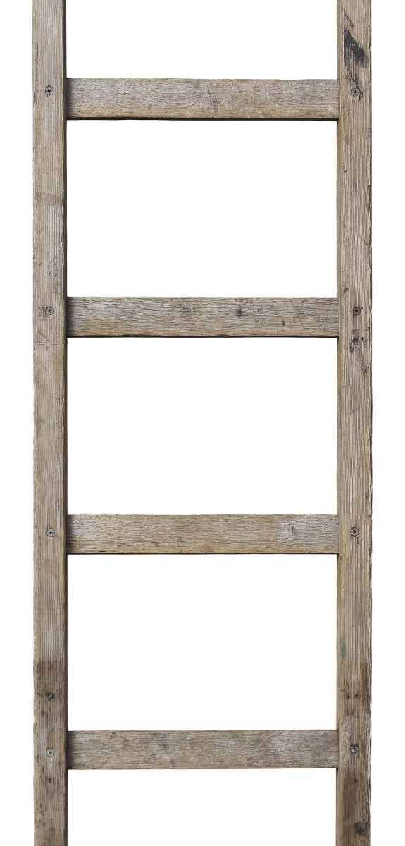 Ladder|Pauree|ਪੌੜੀ