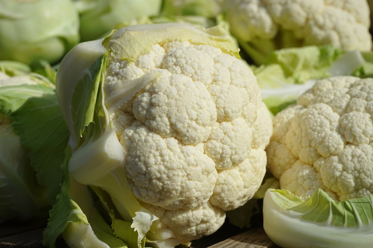 Picture for cauliflower/cavolfiore