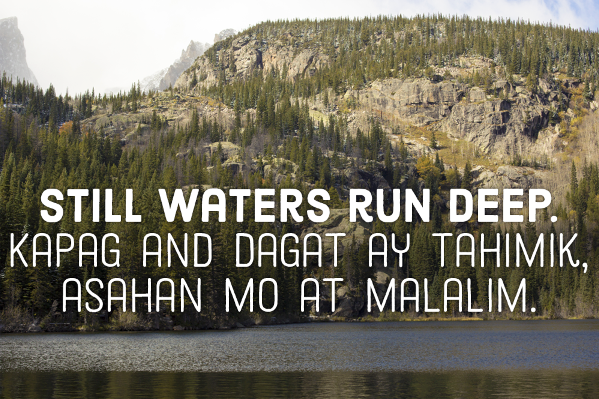 Still waters run deep. —Filipino proverbs