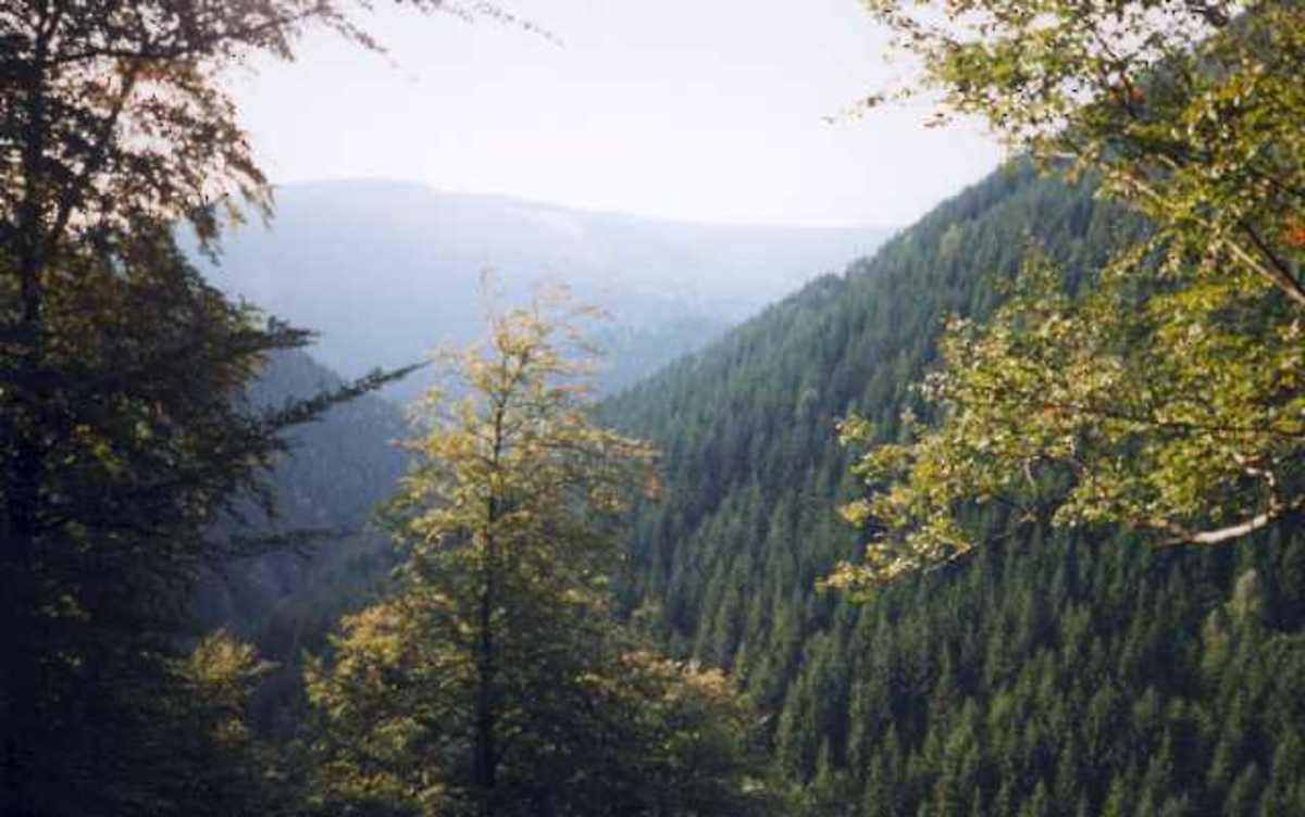 Harz Mountain
