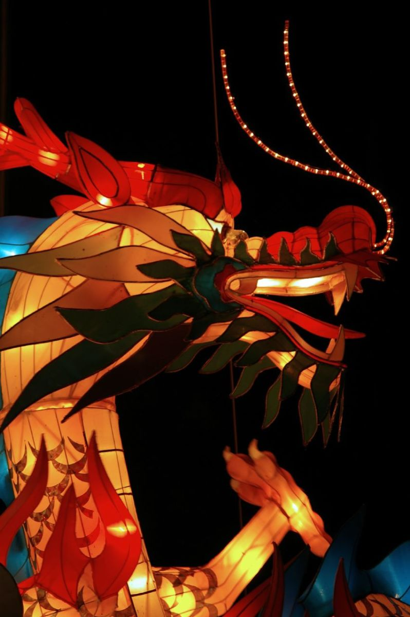 There are various types of Chinese dragons including the Winged dragon