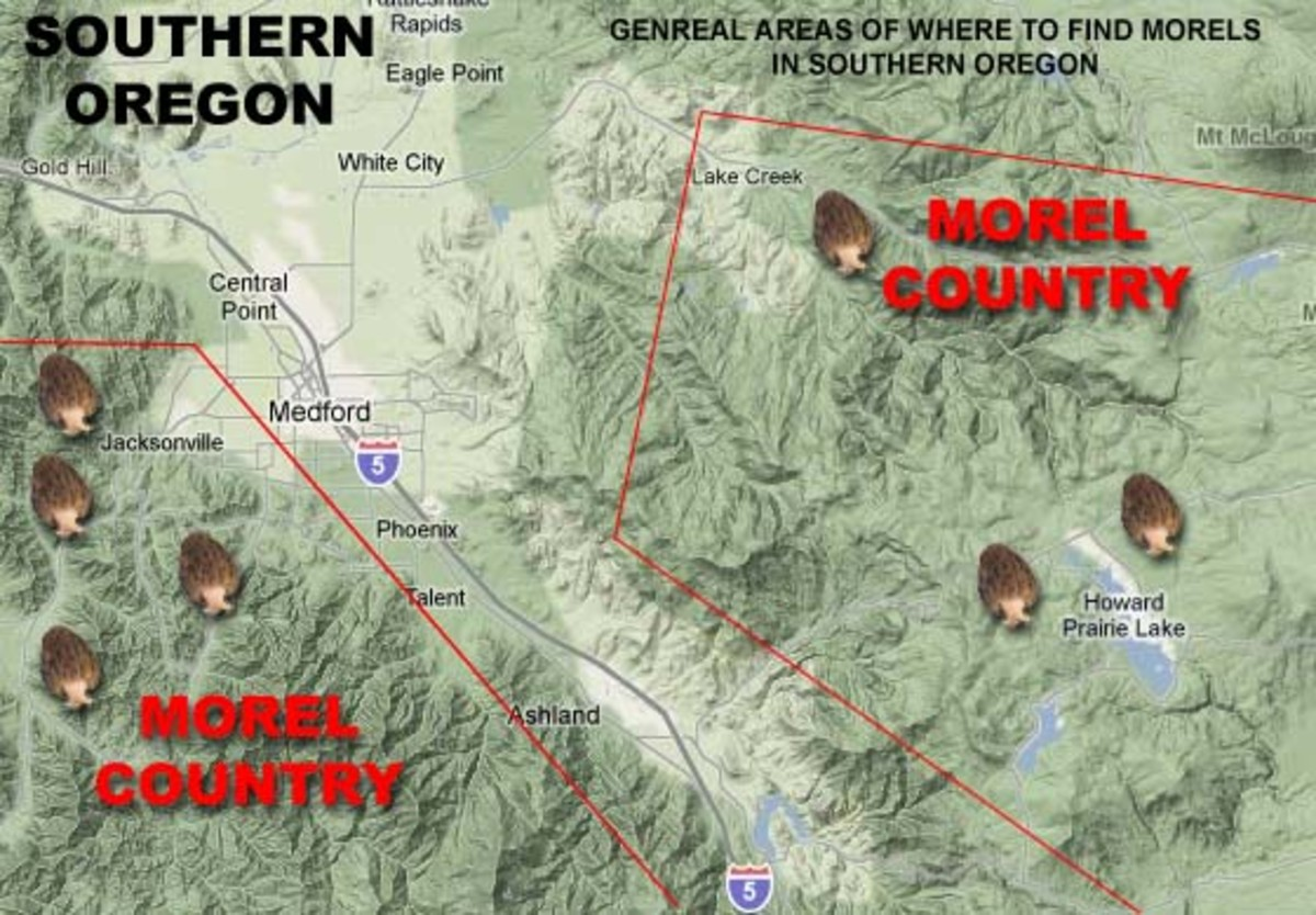 Here is a map of the general areas where I've hunted morels.