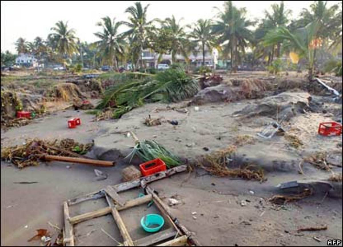 Chaos: Palm trees on the coast are battered by the water