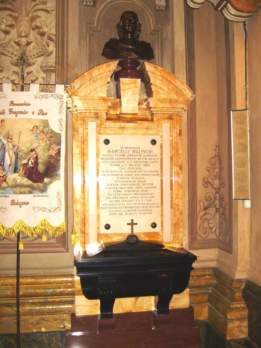 TOMB OF MARCELLO MALPIGHI IN BOLOGNA, ITALY