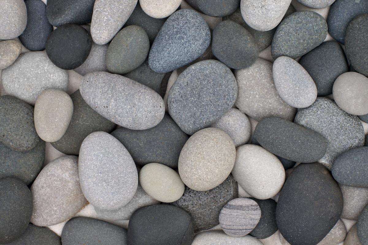 Beach cobblers found on Pier Cove Beach primarily basalt volcanic rock, limestone or sandstone