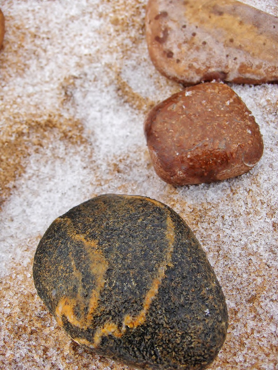 A display of banded basalt and brown mud stone embedded with tiny fossils on Pier Cove Beach