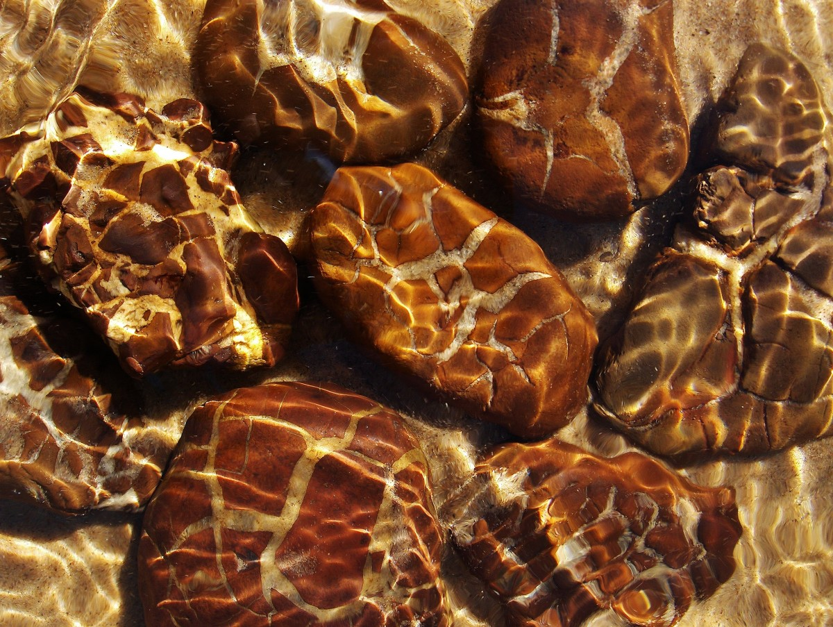 The rush of the Pier Cove Creek moves the sand exposing Septarian Brown Stones