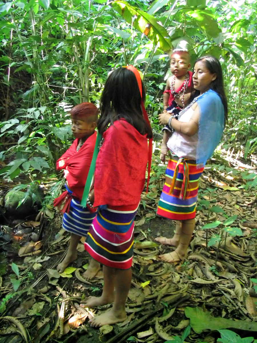 A rare forest-dwelling people: the Tsachilas of Ecuador, also known as the 'Colorado' people.