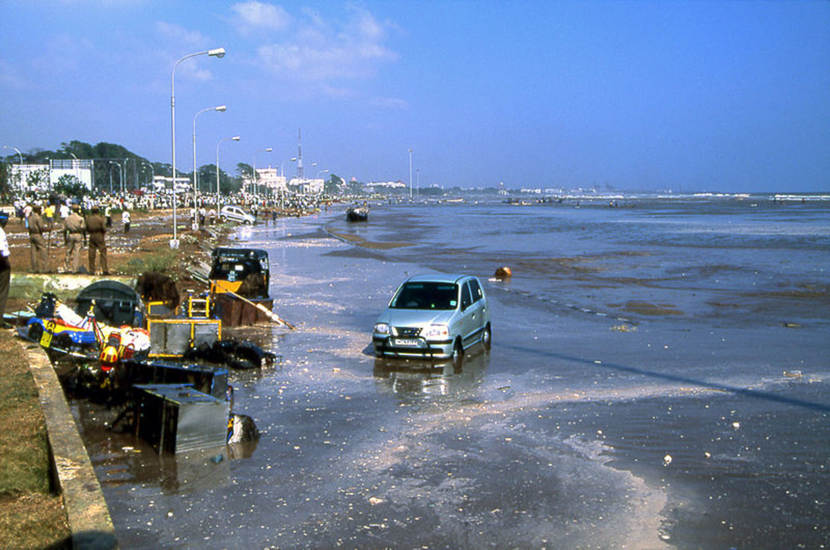 Chennai's Marina Beach, the world's second longest beach after the Tsunami