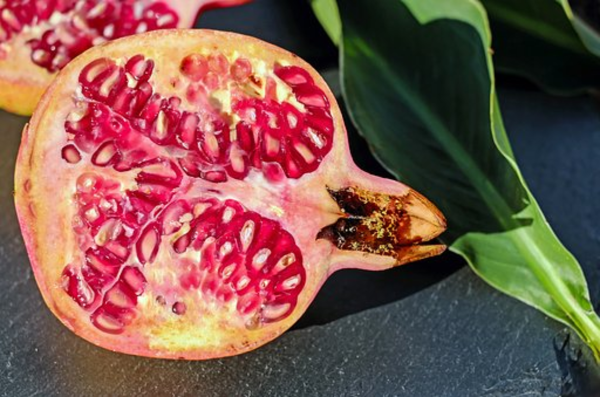 When innocent Persephone ate the pomegranate seeds, it sealed her fate to be Goddess of the Underworld with Hades for part of each year.