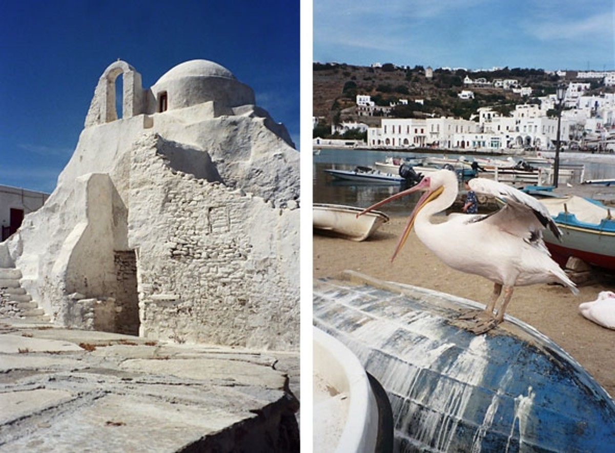 Left: Panagia Paraportiani, an iconic Byzantine church favored by Greek painters for the play of light. Right: Petros (Peter) the Pelican. Mykonos' mascot.